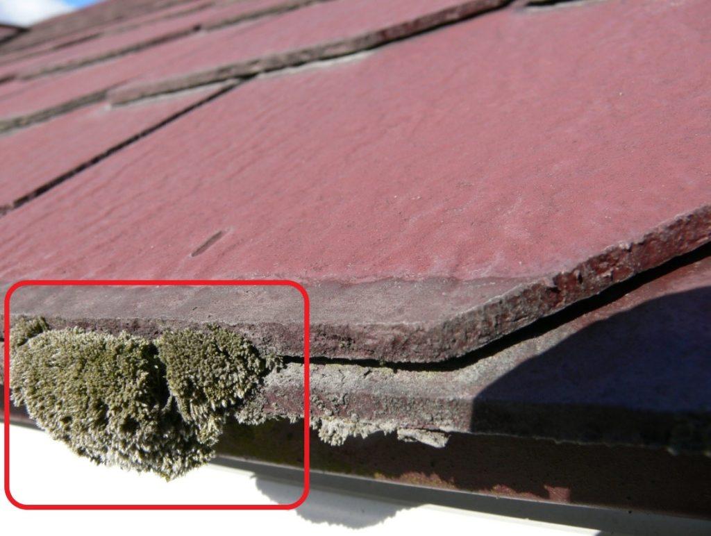 セメント瓦の劣化写真(塗装工房)