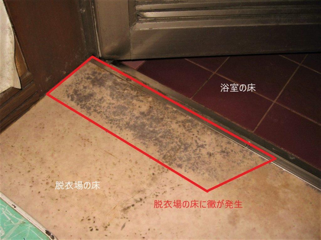 脱衣場の漏水(塗装工房)