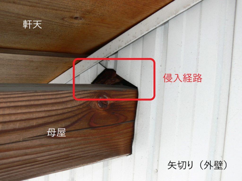 トタン壁の隙間(塗装工房)