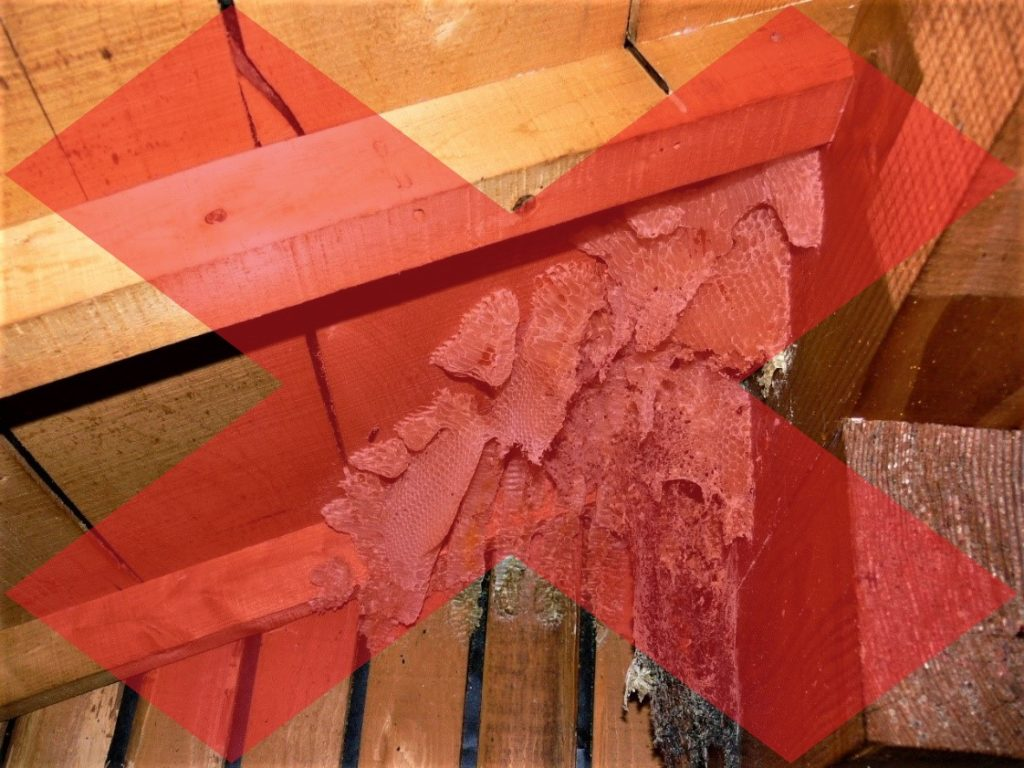 蜜蜂の営巣(塗装工房)